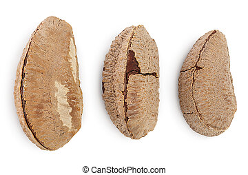 Brasil nuts in nutshell isolated on white background with ...