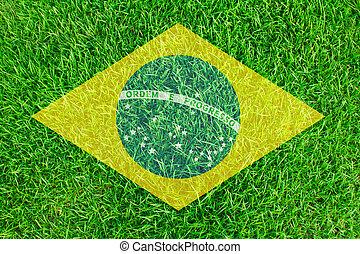brasil, pasto o césped, de, futbol, campeonato, 2014