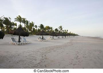 brasil, praia