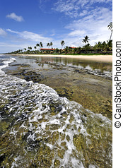 brasil, praia, paraisos