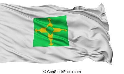 Brasilia City Isolated Waving Flag
