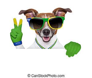 brasilien, fifa, värld kopp, hund
