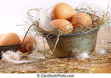 brauner, eier, in, altes , zinn, platte, mit, gefieder