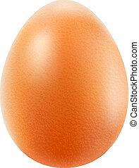 brauner, freigestellt, realistisch, hintergrund, weißes ei