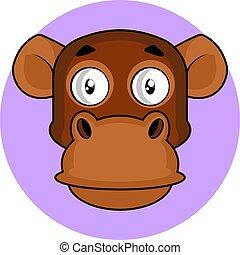 brauner, schimpanse, vektor, abbildung, hintergrund, weißes, karikatur