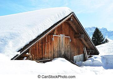 braunwald, 瑞士