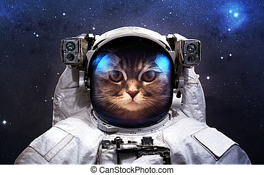 Brave cat astronaut at the spacewalk. This image elements...