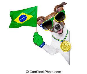 brazília, fifa, kutya, világbajnokság