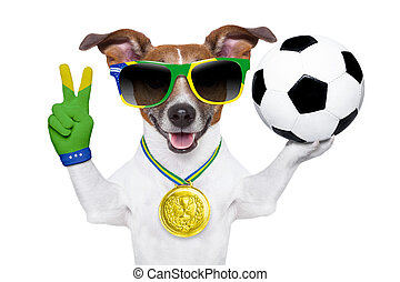 brazília, fifa, világbajnokság, kutya