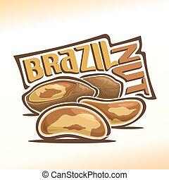 brazília, vektor, diók, ábra