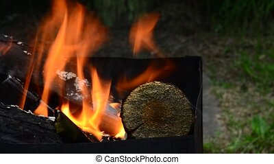 Brazier with burning firewood