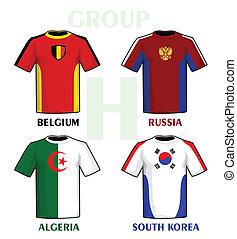 Brazil 2014 group H