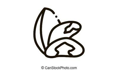 brazil nut Icon Animation. black brazil nut animated icon on white background