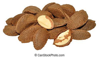 Brazil Nuts In Shells