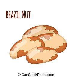 Brazil nuts. Vegetarian healthy organic food in cartoon flat style.