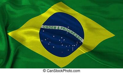 Brazilan flag - 1080p: The flag of Brazil waving