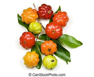 Brazilian Cherry - Pitanga - Tropical fruit also called...