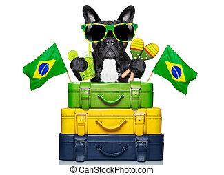 brazilian dog - dog on holidays with brazilian flags and a...