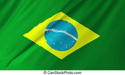 Brazilian loopable flag 2 in 1 - Brazilian loopable flag...