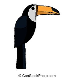 brazilian toucan bird nature sketch