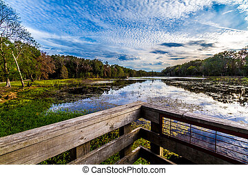 Brazos Bend Park, Texas. - Observation or Fishing Dock at ...