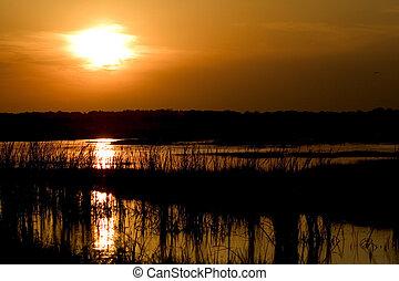 Brazos Sunset - sunset at Brazos Bend Texas.