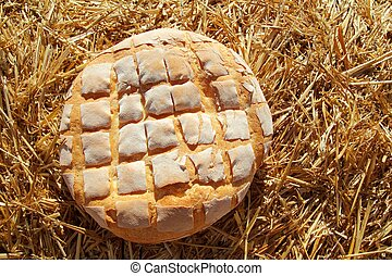bread, 건포도 롤빵, 둥근, 통하고 있는, 황금, 밀, 짚