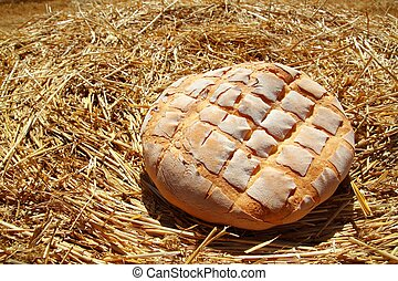 Bread bun round on golden wheat straw