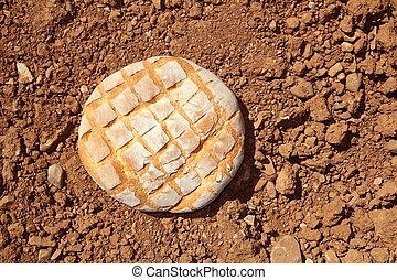Bread bun round on red clay soil background