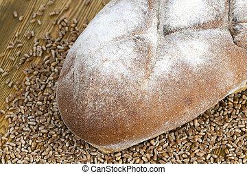 bread grain