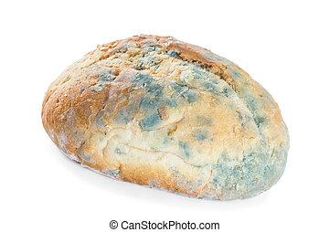 bread, höjande, in, mold., isolera, vita, bakgrund