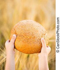 bread, in, hände