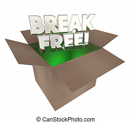 Break Free Liberate Yourself Cardboard Box Words 3d Illustration