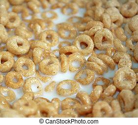 Breakfast Cereal Floating In Milk
