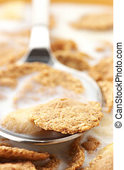 Breakfast cereal with milk close-up