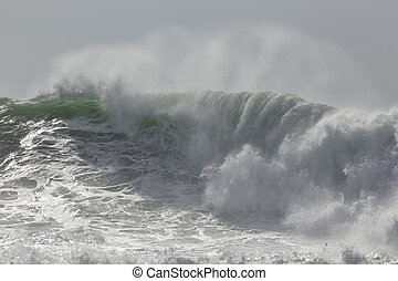 Breaking wave with spray