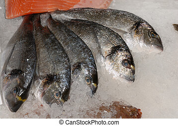 bream at fishmonger - close view of bream heads on ice on ...
