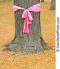 Pink ribbon on oak tree for breast cancer awareness month October.