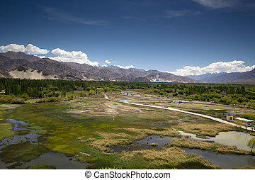 Breathtaking green swamp landscape - Amazing view from top...
