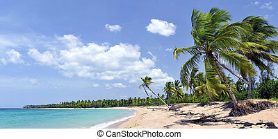 Breathtaking tropical beach panorama with a lot of...