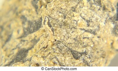 Breccia Natural Texture - This is the natural texture of...