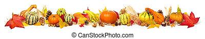 breed, kleurrijke, extra, versiering, formaat, herfst