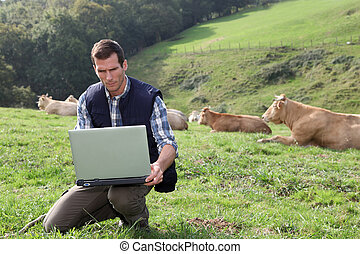 Breeder sitting in cattle field with laptop computer