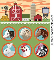 breeding of farm animals vector color illustration