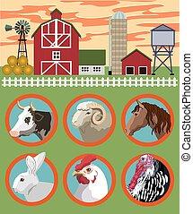breeding of farm animals vector color illustration