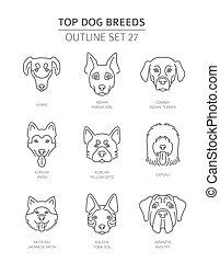breeds., contour, chouchou, collection., premier chien, illustration, vecteur