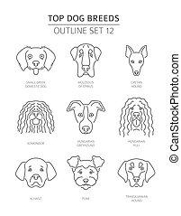 breeds., grobdarstellung, haustier, collection., oberer hund, abbildung, vektor