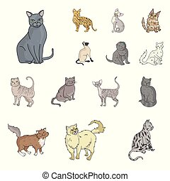 Breeds of cats cartoon icons in set collection for design....
