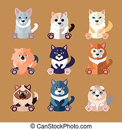 Breeds of Cats Icons. Vector Illustration. - Set of flat...