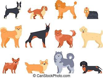 Breeds of dogs. Doberman dog, alaskan malamute, cute bulldog and akita. Group of purebred pedigree doggy character vector isolated illustration icons set. Flat style cartoon animals bundle